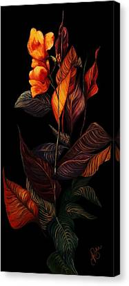 Beauty In The Dark Canvas Print by Yolanda Raker