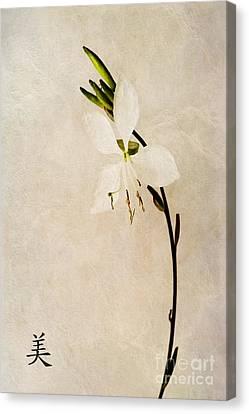 Beauty Canvas Print by John Edwards