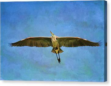 Beauty Of Flight Textured Canvas Print by Deborah Benoit