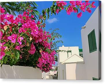 Beauty Of Lanzarote Canvas Print by Mountain Dreams
