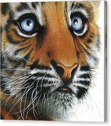 Beauty Of My Mother's Eyes Canvas Print by Jurek Zamoyski