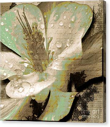 Beauty Vi Canvas Print by Yanni Theodorou