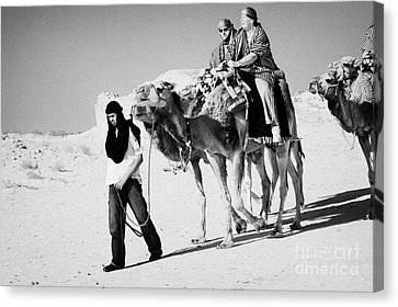 bedouin guide in modern clothing leads british tourists riding camels and wearing desert clothes into the sahara desert at Douz Tunisia Canvas Print by Joe Fox