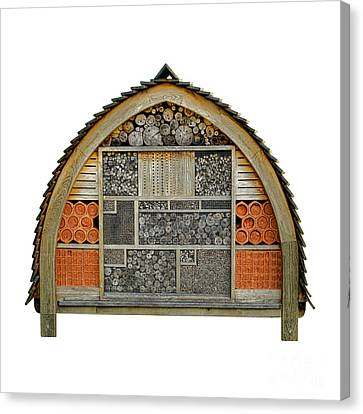 Bee Hotel Canvas Print by Olivier Le Queinec