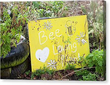 Bee Loving Plants Canvas Print by Ashley Cooper