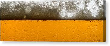 Beer Me Canvas Print by Steve Gadomski