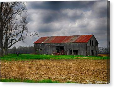 Before The Storm Canvas Print by Mary Timman