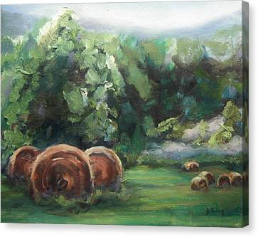 Beliveau Hay Rolls Canvas Print by Donna Tuten