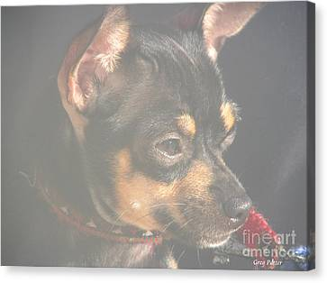 Bella Canvas Print by Greg Patzer