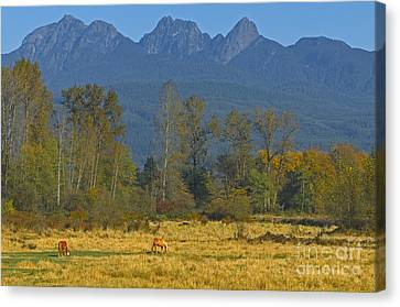 Beneath The Peaks Canvas Print by Sharon Talson