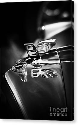 Bentley Hood Ornament  Canvas Print by Tim Gainey