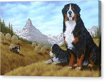 Bernese Mountain Dog Canvas Print by Rick Bainbridge