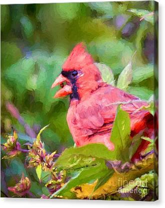 Berry Beak  Canvas Print by Kerri Farley