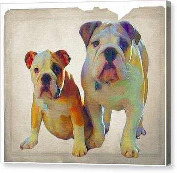 Best Of Show Canvas Print by Anthony Caruso