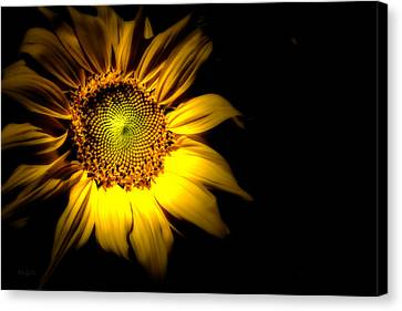 Between Here And There Canvas Print by Bob Orsillo