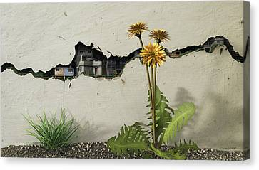 Between The Cracks Canvas Print by Cynthia Decker