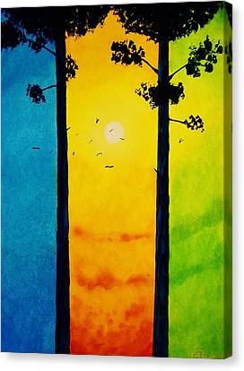 Between The Pines Canvas Print by Kyle  Brock
