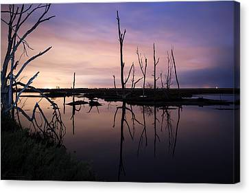 Between Two Worlds By Denise Dube Canvas Print by Denise Dube