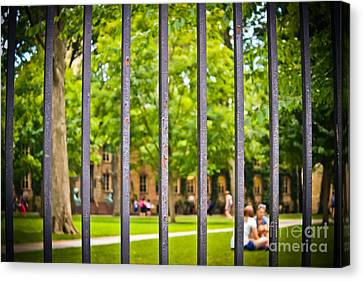 Beyond The Campus Gates Canvas Print by Colleen Kammerer