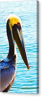 Big Bill - Pelican Art By Sharon Cummings Canvas Print by Sharon Cummings