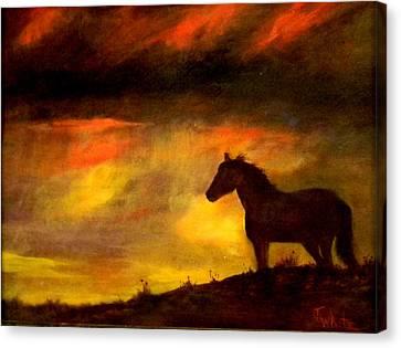 Big Sky Canvas Print by Judie White