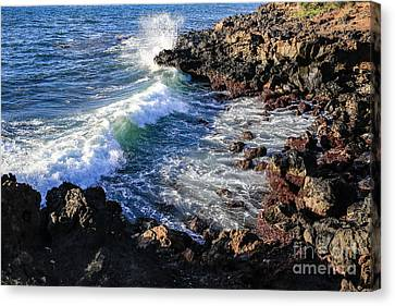 Big Waves Crashing On Lava Cliffs On Maui Hawaii Coastline Canvas Print by Edward Fielding