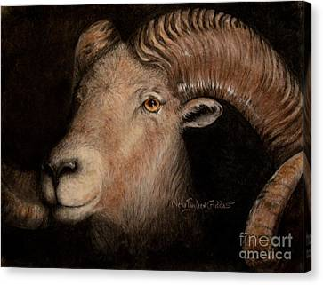 Bighorn Canvas Print by Neva Cruddas