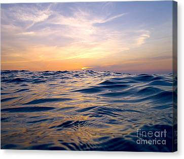 Bimini Sunset Canvas Print by Carey Chen