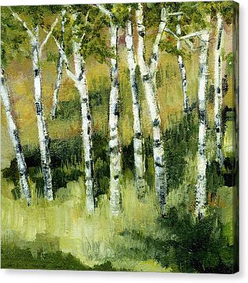 Birches On A Hill Canvas Print by Michelle Calkins