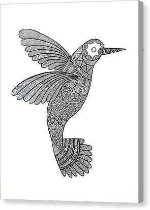Bird Hummingbird Canvas Print by Neeti Goswami