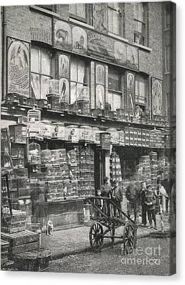 Bird Market, London, 1890s Canvas Print by British Library