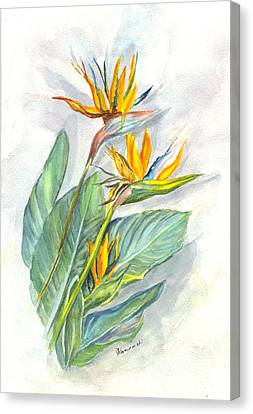 Bird Of Paradise Canvas Print by Carol Wisniewski