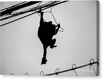 Bird On A Wire Canvas Print by Dean Harte