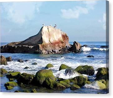Bird Sentry Rock At Dana Point Harbor Canvas Print by Elaine Plesser