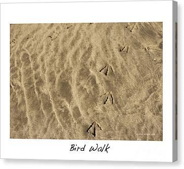 Bird Walk Canvas Print by Artist and Photographer Laura Wrede