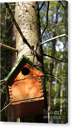 Birdhouse By Line Gagne Canvas Print by Line Gagne
