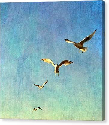 Birds Above Canvas Print by Michelle Calkins