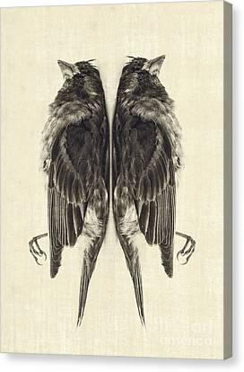 Mirror Mirror Canvas Print by Edward Fielding