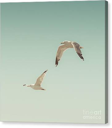 Birds Of A Feather Canvas Print by Lucid Mood