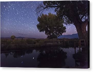 Bishop Canal Star Trails Canvas Print by Cat Connor