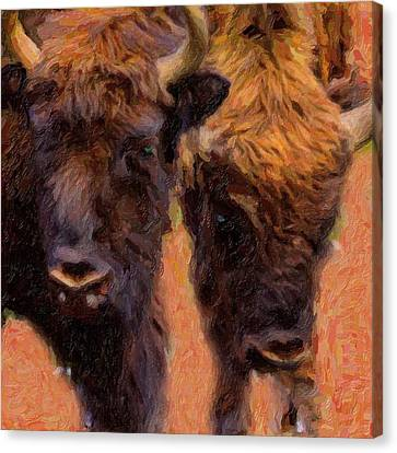 Bison Canvas Print by Toppart Sweden
