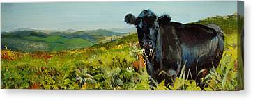 Black Cow Dartmoor Canvas Print by Mike Jory
