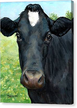 Black Cow With Star Canvas Print by Dottie Dracos