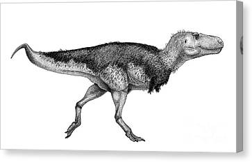 Black Ink Drawing Of Zhuchengtyrannus Canvas Print by Vladimir Nikolov