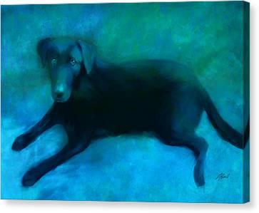 Black Lab Canvas Print by Ann Powell