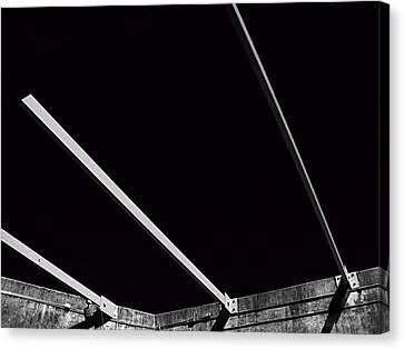 Black Velvet Canvas Print by Wendy J St Christopher