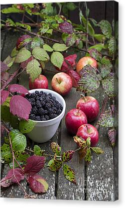 Blackberry And Apple Canvas Print by Tim Gainey