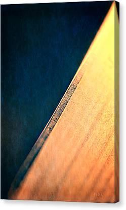 Blade Canvas Print by Bob Orsillo