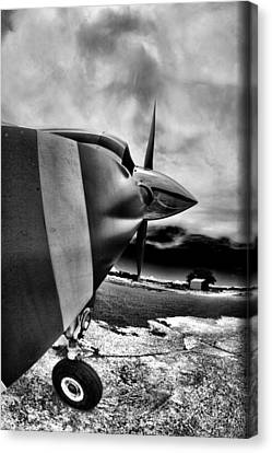Blade Flyer Canvas Print by Paul Job
