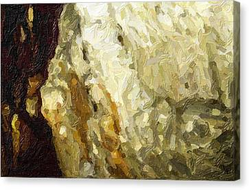 Blanchard Springs Caverns-arkansas Series 03 Canvas Print by David Allen Pierson